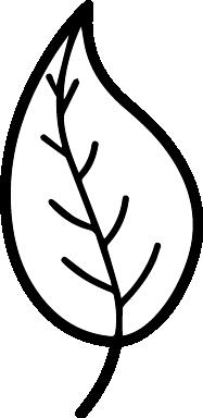 Debris Icon